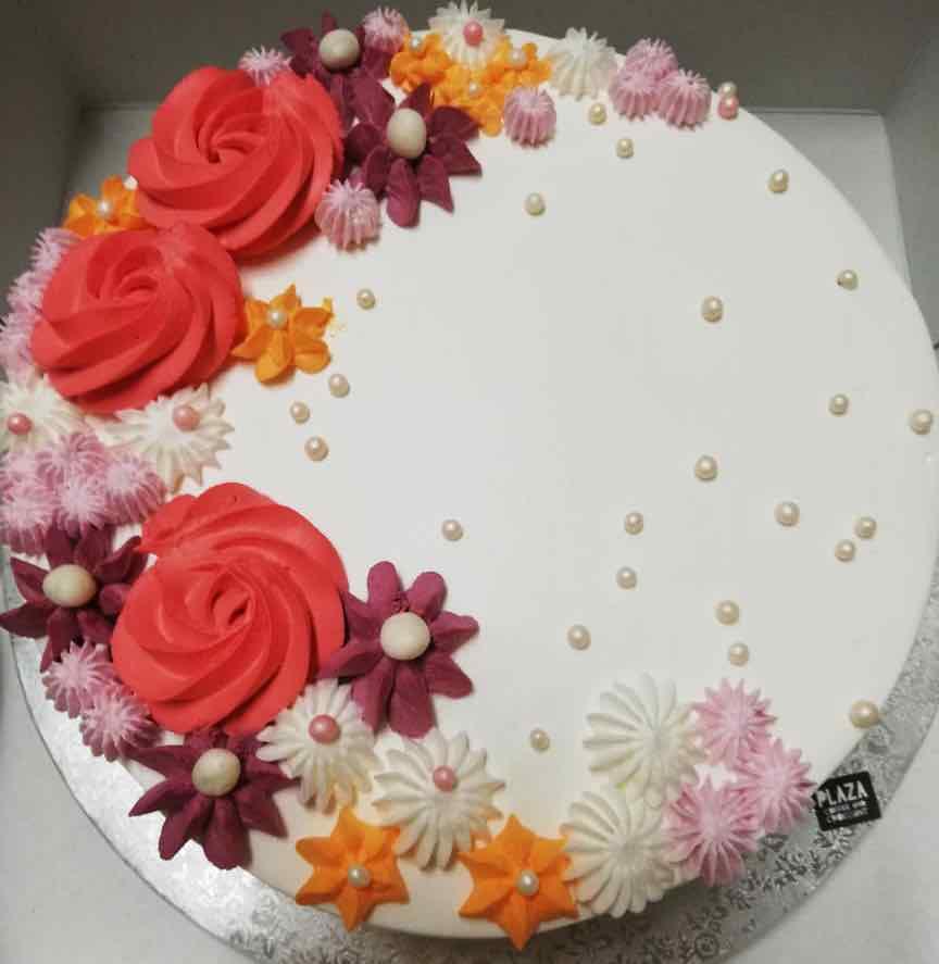 plaza-cakes00015