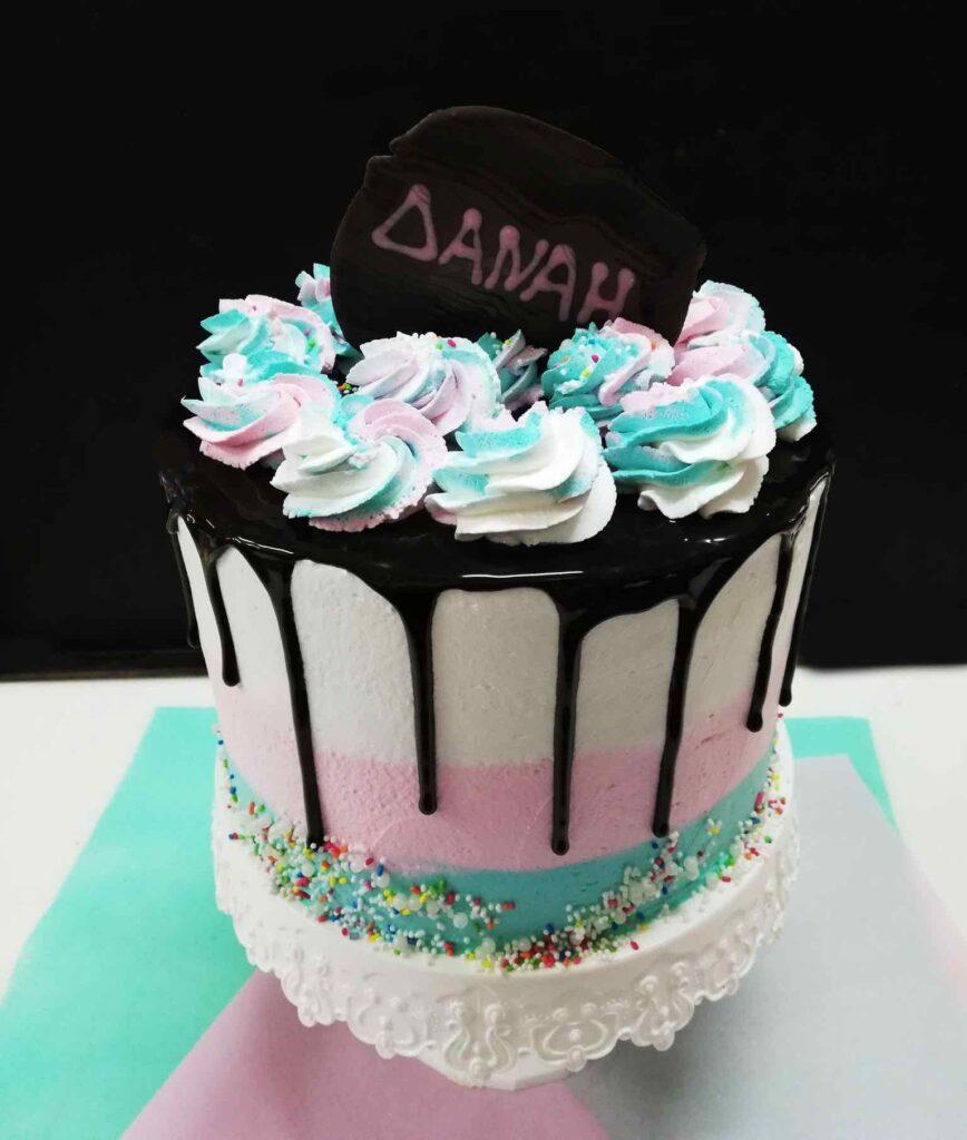 plaza-cakes00020