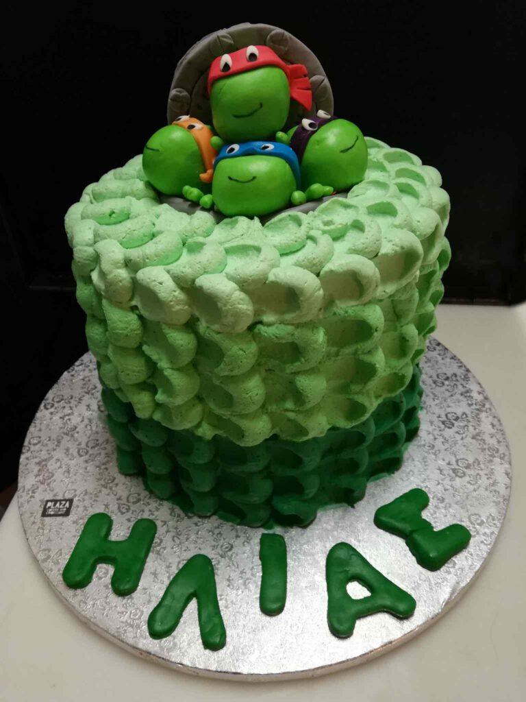 plaza-cakes00024