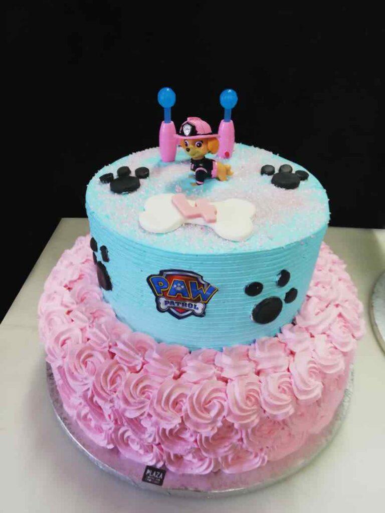 plaza-cakes00031